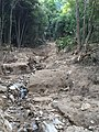 Heavy rain disaster in Hiroshima-20140823 171006.jpg