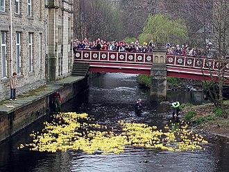 Rubber duck - Hebden Bridge Duck Race, West Yorkshire