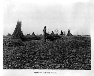 Fayette County, Kentucky - Hemp production was a major crop
