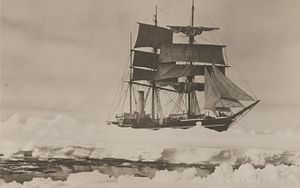 Terra Nova (ship) - Terra Nova, photographed in December 1910 by Herbert Ponting