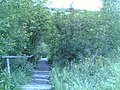 Herttoniemen entisen hyppyrimäen alastulorinteen portaat - panoramio.jpg