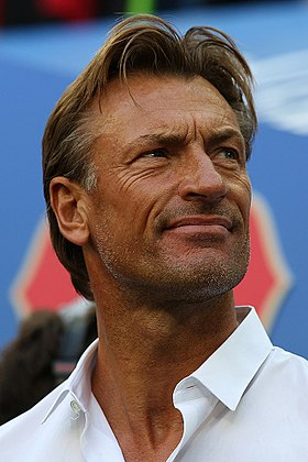 image illustrative de l'article Hervé Renard