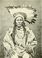 Hidatsa chief Crow Flies High (cropped).jpg