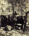 Hidden tent of field post office in Gallipoli.jpg