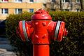 Hidrante de agua, Gniezno, Polonia, 2012-04-06, DD 03.JPG