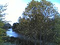 Hietapellonkuja vantaa - panoramio.jpg