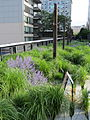 High Line, New York City (2014) - 07.JPG