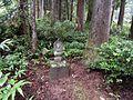 Hio, Toyama, Toyama Prefecture 930-1283, Japan - panoramio (24).jpg