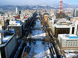View of the Odori Park during the Sapporo Snow Festival from the observation deck of the Sapporo TV Tower