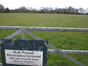 Holt Pound - Holt Pound cricket ground in 2010