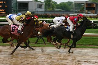 Going (horse racing)