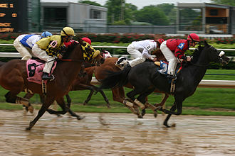 Going (horse racing) - A sloppy racetrack in United States.