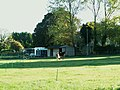 Horses in field near Martinstown - geograph.org.uk - 590177.jpg