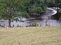 Horseshoe Falls - geograph.org.uk - 206973.jpg