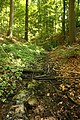 Hotond-Scherpenberg 12.jpg