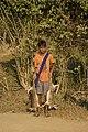 Hunting hare Lepus nigricollis MG 5312 04.jpg