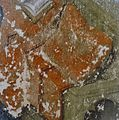 INT. ANNUNCIATIE (TIJDENS RESTAURATIE), DETAIL - Breda - 20314407 - RCE.jpg