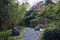 Il cammino al bosco di Bambù di Villa Carlotta.jpg