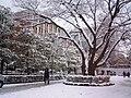 Imadegawa doshisha in winter.jpg