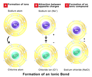 Ionic bonding - Ionic bonds in sodium chloride
