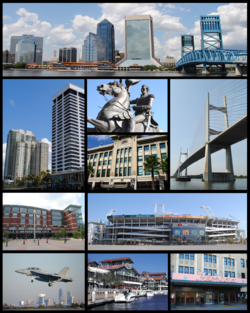 Dari atas, kiri-kanan: Downtown Jacksonville, Riverplace Tower, EverBank Field, Patung Andrew Jackson, Dames Point Bridge, Veterans Memorial Arena, Jacksonville Landing, Florida Theatre, Prime F. Osborn III Convention Center, St. James Building, Baseball Grounds of Jacksonville, Hart Bridge