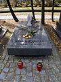 Jan Mietkowski - Irena Mietkowska - Cmentarz Wojskowy na Powązkach (65).JPG