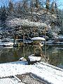 Japanese Garden (15858361228).jpg