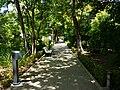 Jardí Botànic de València passeig.JPG