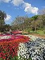 Jardim Botânico Jani Pereira (7).jpg