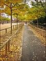 Jardin du Luxembourg 2473238.jpg