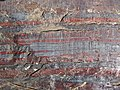 Jaspilite banded iron formation (Soudan Iron-Formation, Neoarchean, ~2.69 Ga; Stuntz Bay Road outcrop, Soudan Underground State Park, Soudan, Minnesota, USA) 45 (19229308671).jpg