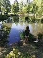 Jezírko v parku.jpg