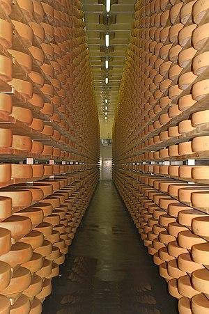 Bregenz Forest - Bregenz Forest cheese dairy cellar