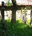 Kamienna Góra, cmentarz żydowskiDSC06864.JPG