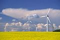 Kavarna wind farms.jpg