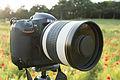 Kenko Mirror Lens 800mm f-8 DX - New Gear Acquired! (8738738718).jpg