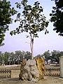 Khajuraho 02 2015in03kjrh 051 (27228402898).jpg