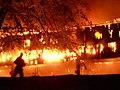 Kiev Building fire 19 June 2011 - panoramio.jpg