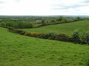 Killyclogher, Omagh - geograph.org.uk - 432941.jpg