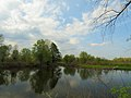 Kilnyshche lake Muromets1.JPG