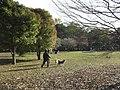 Kinuta Park 01.jpg