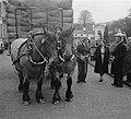Koningin Juliana spreekt met de man die de paard-en-wagen ment, Bestanddeelnr 907-7286.jpg