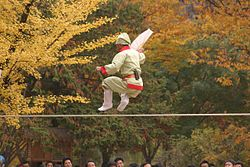 Korea-Jultagi-Tightrope walker-01.jpg
