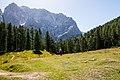 Kranjska Gora (9782576001).jpg