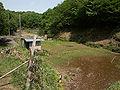 Kurokawa 06b6248v.jpg
