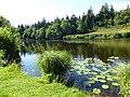 L'etang - panoramio.jpg