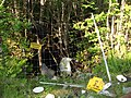 Långviksgruvorna aug2009 04.jpg