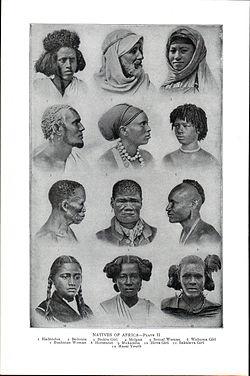 African American lesbiske romaner