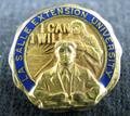 La Salle Extension University Alumni Pin.png