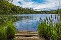Lac de Viremont Jura.jpg